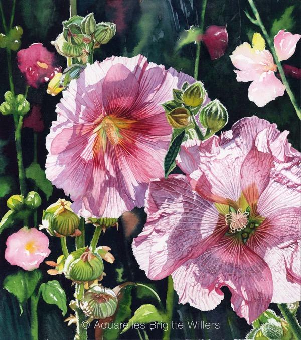 Contre jour aux roses (46x41cm)<br/>© Aquarelle Brigitte Willers.