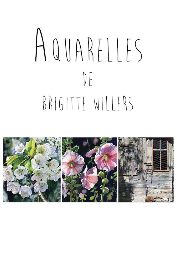 couverture-livre-brigitte-willers